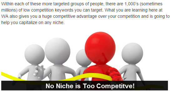 no niche is too competitive