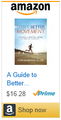 a guide to better movement by todd hargrove