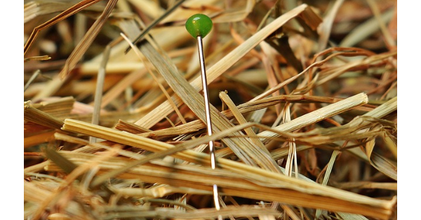 Finding the best work at home opportunity can be like looking for a needle in a haystack
