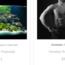 HPD affiliate marketing websites for sale